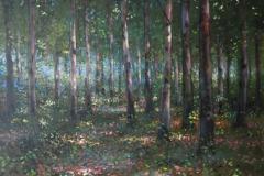 Blean Woodland,, nr. Canterbury,60 x 50cm, oil on canvas - sold