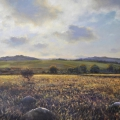 Hound Tor Down, 81 x 51cm, oil on canvas