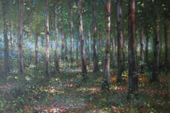 Blean Woodland,, nr. Canterbury,60 x 50cm, oil on canvas - sold