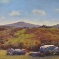Bonehill towards Rippon Tor (plein air), 43 x 75cm, oil wood panel